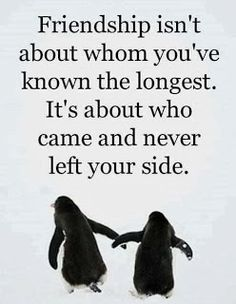 Quotes About Friendship | Best Friends Quotes | Depressing Quotes | DepressingQuotesz.blogspot.com