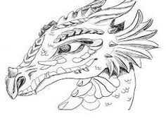 dragon coloring pages for adults bing images - Dragonvale Dragons Coloring Pages