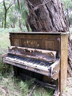 Jason Cotter, one of the piano's in Wambyn Olive Farm's ruined piano sanctuary