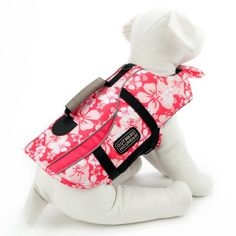 Have fun! Be Safe! Doggie life jacket  Just got this for my little one who is afraid of water.