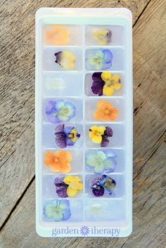 Floral Ice Cubes Tips and Tricks