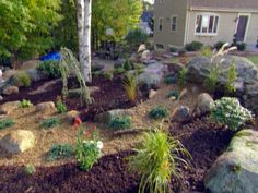 How to Make a Rock Garden : How-To : DIY Network