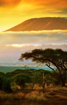 Kenya Tour with Airfare from Great Value Vacations - Nakuru Sunset over Mount Kilimanjaro. Check Groupon to find discounted airfare and hotels as you plan your trip to Kenya. Source by snouri. Monte Kilimanjaro, Cool Places To Visit, Places To Travel, Travel Stuff, Foto Poster, Original Travel, Parc National, All Nature, Africa Travel