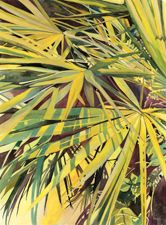 Watercolors Gallery Beaches Coconuts and more