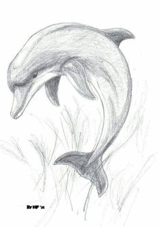 Animal Drawings Images For > Pencil Drawings Of Dolphins Cool Art Drawings, Pencil Art Drawings, Amazing Drawings, Art Drawings Sketches, Easy Drawings, Animal Drawings, Sketch Art, Drawing Ideas, Animal Sketches Easy