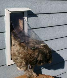 8 unique install a doggie door inspiration pinterest doors
