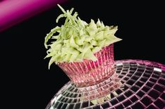 Eric Lanlard's recipe for fresh, zesty cupcakes Mojito Cupcakes, Key Lime Cupcakes, Gourmet Cupcakes, Baking Cupcakes, Cupcake Recipes, Baking Recipes, Cupcake Cakes, Cupcake Ideas, Cup Cakes