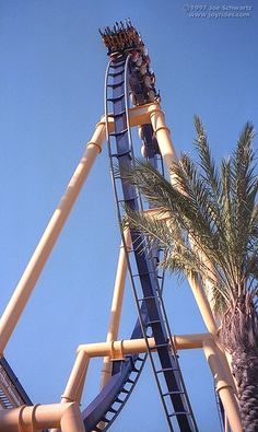 Montu, Busch Gardens Tampa, Florida First Rollar coaster and favorite one in the world! let me tell you ill cry when i go on it agian!