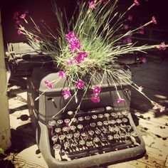 Typewriter planter! Vintage Stuff, Typewriter, Florence, Gardens, Flowers, Plants, Color, Inspiration, Colour