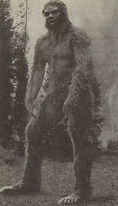 Mount St. Helens Bigfoot? Creepy, without question.