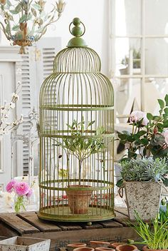 Vintage-Style Birdcage | Price: £89.00  // This vintage-style bird cage looks gorgeous filled with seasonal plants (not suitable for birds).  | Home Accessories // #home #décor #accessories