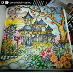 """213 Likes, 2 Comments - Adult Coloring Books & Stuff (@coloringtoolkit) on Instagram: """"#Repost @colorindolivrostop with @repostapp ・・・ #bomdia #beautifullcoloring Use…"""""""