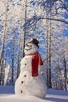 Snowman With Red Scarf And Black Top Print