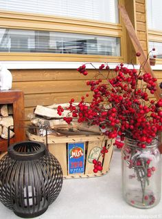 Balcony in the winter: Hawthorn braches