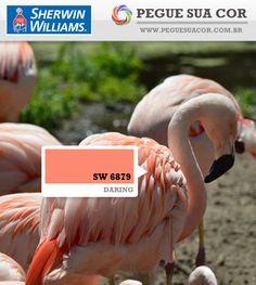 SW 6879 - Daring