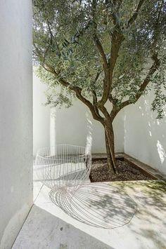 Garden Design Australian minimalism meets industrial chic in a Milanese loft.Garden Design Australian minimalism meets industrial chic in a Milanese loft Exterior Design, Interior And Exterior, Outdoor Spaces, Outdoor Living, Nail Garden, Casa Patio, Minimalist Garden, Minimalist Design, Industrial Chic