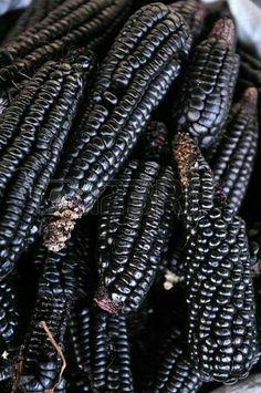 Falling Softly In Black Black Corn, Black And Brown, Glass Gem Corn, Popcorn Seeds, Comida Latina, Exotic Fruit, Black Flowers, Fruit And Veg, Shades Of Black