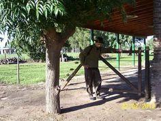 Huellas+pampas,la+familia,en+el+pueblo+de+Antonio+Carboni+:+La+familia+viajera+de+Huellas+Pampas+desde+el+2008+presente+en+la+web,buscanos+en+google+|+huellaspampas0