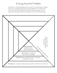 Energy Pyramid Foldable from kprice1022 on TeachersNotebook.com -  (2 pages)  - This foldable turns into a pyramid that helps students visualize the energy pyramid flow of energy from producers to herbivores to carnivores to decomposers