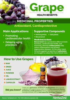 Grape is one of the most identifiable plants in the world. Read on to learn why it has been a staple of human health and happiness for centuries. Grape Health Benefits, Fruit Benefits, Grape Nutrition, Health And Nutrition, Natural Medicine, Herbal Medicine, Herbal Remedies, Natural Remedies, Diet Recipes