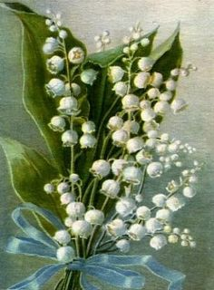 sweetruffles:  (via Flora inspiration) Lily of the Valley - my mom's favorite flower