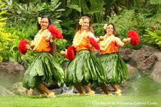 Hawaiian Leis | Hawaiian Tropical flowers and Leis from Hawaiis LARGEST RETAIL ...