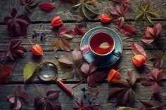#autumn #mood #still_life_gallery #tv_stilllife #stilllifephotography #ig_russia #Russia_ww #best_photogram #incredible_shot #ig_worldclub #SonyPhotoRussia #sony #pentacon #manuallens