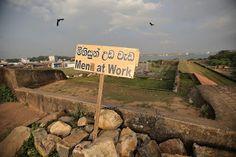 from my travels in Sri Lanka. men at work Working Man, Sri Lanka, Building, Nature, Travel, Men, Naturaleza, Viajes, Buildings