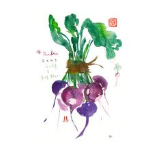 Title : Purple radish Archival giclee reproduction print. Signed with pencil. Printed on fine art BFK Rives hot-pressed paper, smooth