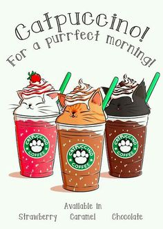 Starbucks cat cappuccino flavors caramel chocolate strawberry