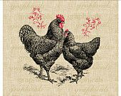 Black chicken rooster hen pair Red flourishes instant digital download image for transfer to fabric paper pillows burlap decoupage No.2114