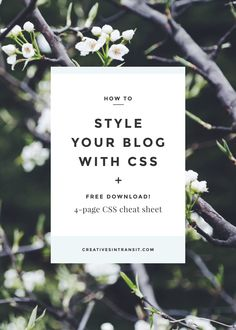 How to code your website and blog with CSS plus a free CSS cheat sheet! Repin to read coding tips and download later.