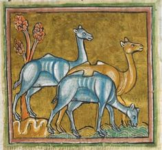 Animal detail from medieval illuminated manuscript  - British Library Royal MS 12 F XIII - c 1230-14th century - f38r