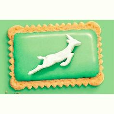 Springbok you biscuit! Sports Party, Kids Sports, Party Themes, Party Ideas, Kid Table, Childrens Party, Old And New, Rugby, Special Day