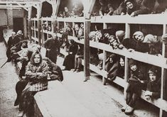 Women in the Birkenau concentration camp.