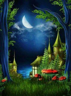 Mágica noche