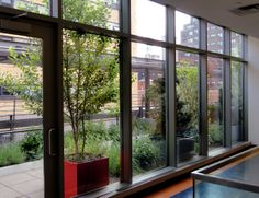 The interior of the #NYC school enjoys the view of the new garden.