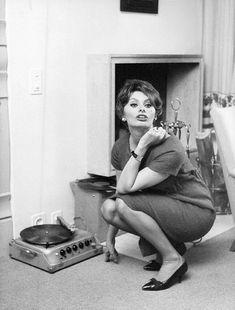 Dedicated to the Italian actress, style icon, bombshell and living legend SOPHIA LOREN! Sophia Loren, Loren Sofia, The Addams Family, Lps, Roger Daltrey, Fred Flintstone, Marvin Gaye, Eric Clapton, Jimi Hendrix