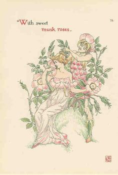 Musk rose page 28 by Walter Crane, flowers from Shakespeare's garden, 1906