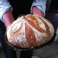come-se: Pão com farinha integral e fermentação natural