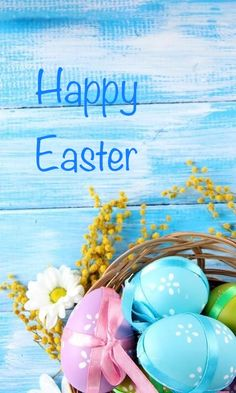 Thank you Adorable xoxo Happy Easter Quotes, Happy Easter Wishes, Happy Easter Everyone, Happy Easter Pictures Inspiration, Ostern Wallpaper, Gb Bilder, Easter Season, Crafts With Pictures, Easter Parade