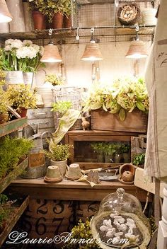 ...cozy, charming garden shed..