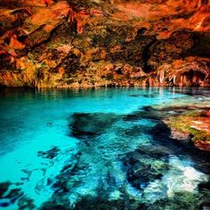 voyage to the bottom of the cenote dailymotion
