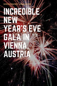 Travelling to Vienna at Christmas and looking for things to do in Vienna in winter? Tap this pin to read more about an amazing New Year's Eve gala in Vienna, Austria. Vienna Places To Visit, Cool Places To Visit, Best Countries In Europe, Places In Europe, New Year's Eve Gala, Stuff To Do, Things To Do, International Holidays, Travel Around Europe