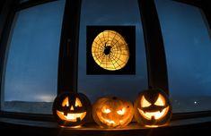 Halloween Window Clings, Indoor Lights, White Wrapping Paper, Flower Window, Window Art, Video Clip, Suncatchers, Windows And Doors, Colored Glass