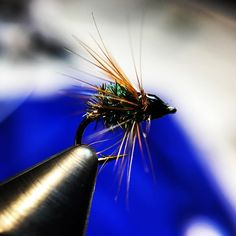 """21 Likes, 1 Comments - Valley Streams Fly Fishing (@valleystreamsflyfishing) on Instagram: """"Name this fly! #flyfishing #flytying #flytyingaddict #veteranowned #valleystreamsflyfishing…"""""""