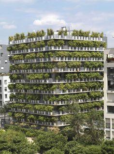 facade bamboo - Sök på Google