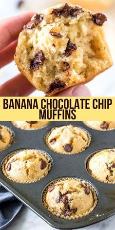 These Banana Chocolate Chip Muffins are moist fluffy buttery and filled with chocolate chips. They taste like a warm slice of banana breadand have perfectly domed golden muffin tops. Banana Chocolate Chip Muffins, Chocolate Chip Recipes, Banana Bread Recipes, Easy Banana Bread Muffins, Desserts With Chocolate Chips, Banana Oatmeal Muffins, Banana Blueberry Muffins, Bon Dessert, Dessert Recipes