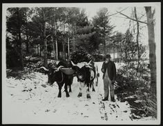 Search Results — Historic New England 1892 Maine