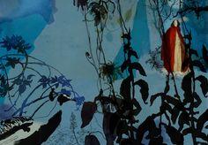 Daniel egneus - Little Red Riding Hood / Harper Collins 2011